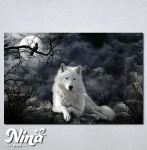 Slike na platnu Vuk Nina230_P