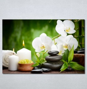 Slike na platnu Wellness spa bela orhideja Nina 181_P