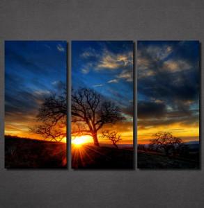 Slike na platnu Zalazak sunca i drvo Nina30123_3