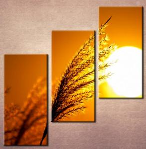 Slika na platnu Klas žita Nina3011_3