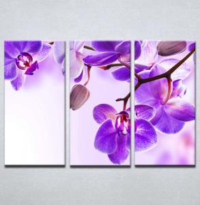Slika na platnu Ljubicasta orhideja 3023_3