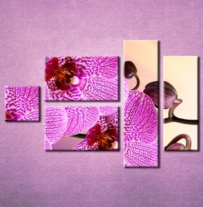 Slika na platnu Orhideja 3021_5