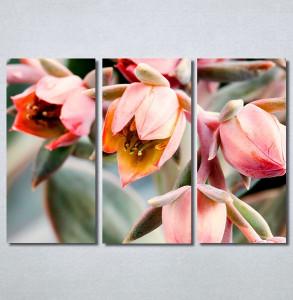 Slike na platnu Cveće Nina30274_3