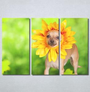 Slike na platnu Dog Nina30221_3