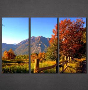 Slike na platnu Jesen na planini Nina30120_3