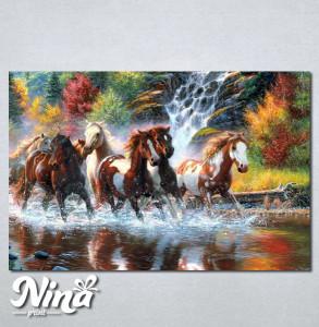 Slike na platnu Konji art Nina249_P