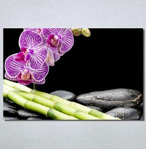 Slike na platnu Ljubicasta orhideja i bambus Nina30213_P