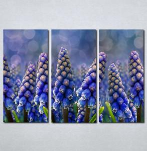 Slike na platnu Ljubičasti cvet neobičnog oblika Nina002_3