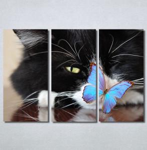 Slike na platnu Mačka i leptir Nina30250_3