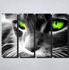 Slike na platnu Macka sa zelenim ocima Nina167_4