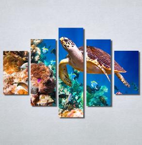 Slike na platnu Morski svet Nina30215_5