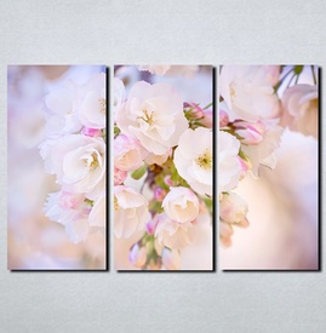 Slike na platnu Najlepši cvet Nina113_3