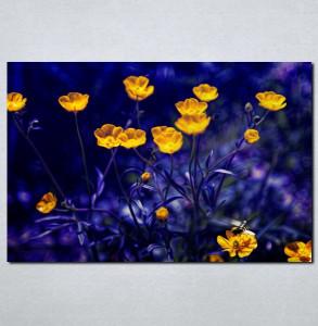 Slike na platnu Prelep žuti cvet Nina003_P