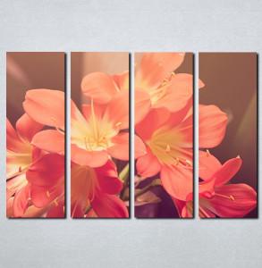 Slike na platnu Roze cveće Nina087_4