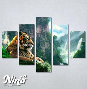 Slike na platnu Tigar Nina245_5
