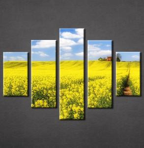 Slike na platnu Žuta poljana Nina3086_5