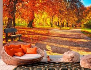 Foto tapeta Jesenje boje u šumi Tapet031