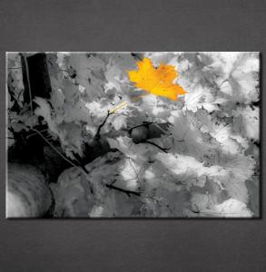 Slika na platnu Žuti list Nina3044_P