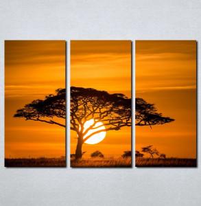 Slike na platnu Afrika zalazak sunca Nina077_3