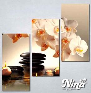 Slike na platnu Bela orhideja Nina225_3
