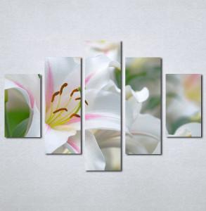 Slike na platnu  beli cvet_Nina130_5