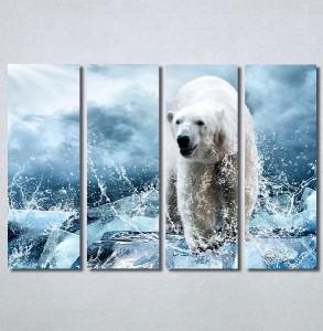 Slike na platnu Beli medved Nina30272_4