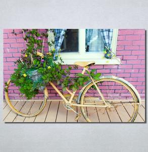 Slike na platnu Bicikl sa cvecem Nina30214_P