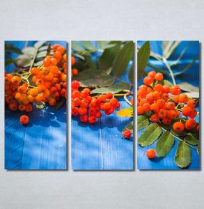 Slike na platnu Bobice Nina30258_3