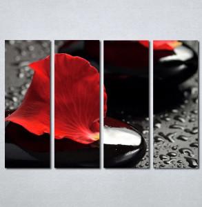 Slike na platnu Crvena latica cveta Nina124_4