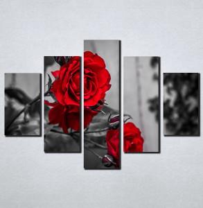 Slike na platnu Crvene ruže Nina098_5