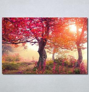 Slike na platnu Crveno drvo u jesen Nina30370_P