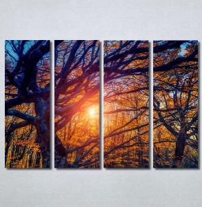 Slike na platnu Drvo Nina30302_4