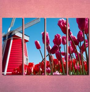 Slike na platnu Holandija Nina30106 _4