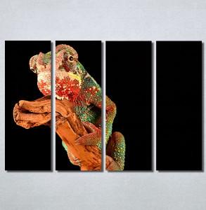 Slike na platnu Kameleon Nina30183_4