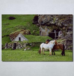 Slike na platnu Konji Nina30188_P