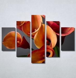 Slike na platnu Narandžaste kale Nina30216_5