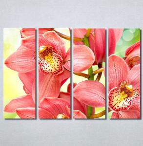 Slike na platnu Orhideje 2 Nina30306_4
