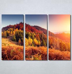 Slike na platnu Planinske jesenje boje Nina30222_3