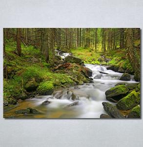 Slike na platnu Planinski potok Nina30371_P