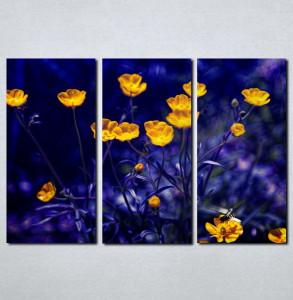 Slike na platnu Prelep žuti cvet Nina003_3