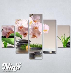 Slike na platnu Roze orhideja Nina304_5