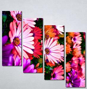Slike na platnu Šareno cveće Nina056_4