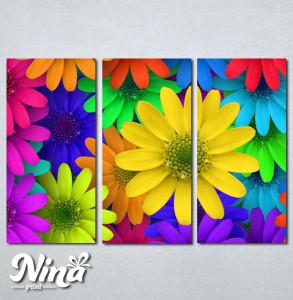 Slike na platnu Šareno cveće Nina250_3