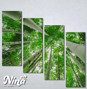 Slike na platnu Suma bambusa Nina329_4