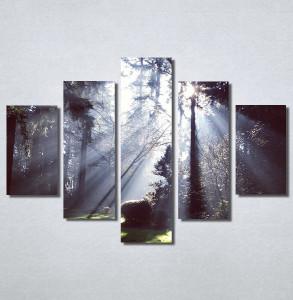 Slike na platnu Svetlost u šumi Nina30180_5