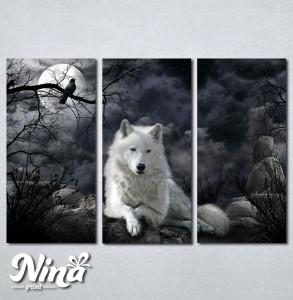 Slike na platnu Vuk Nina230_3
