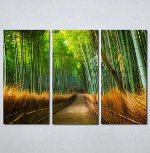 Slike na platnu Bambus Nina215_3