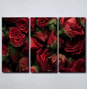 Slike na platnu Buket crvenih ruza Nina143_3