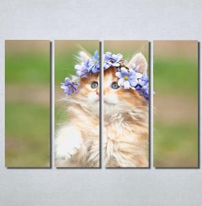 Slike na platnu Cat Nina30230_4