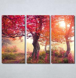 Slike na platnu Crveno drvo u jesen Nina30370_3